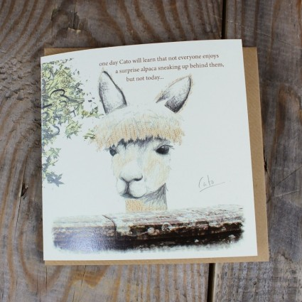 Alpaca Greeting Card Cato